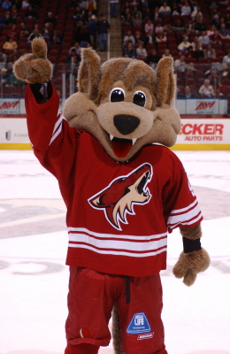 Phoenix Coyotes – Minnesota Wild