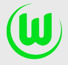 Analiza meczu: Hannover 96 – Wolfsburg